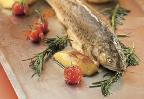 Kulinarik aus dem See