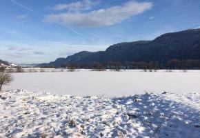 Winter im Bleistätter Moor