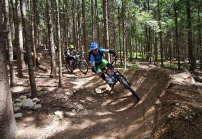 Mountainbike Trail Area One